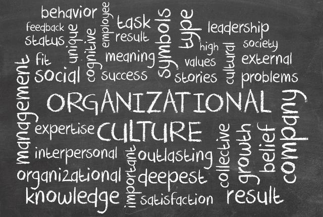 כל שירות ייעוץ ארגוני למנהלי חברות ועסקים