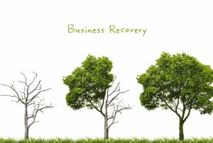 הבראת עסקים וצמיחה