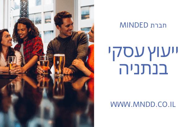 ייעוץ עסקי בנתניה - MINDED