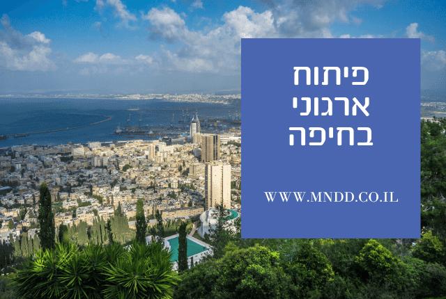 פיתוח ארגוני בחיפה | MINDED