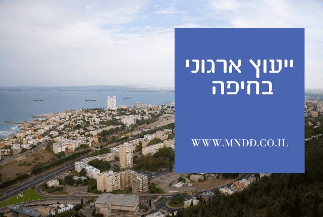 ייעוץ ארגוני בחיפה